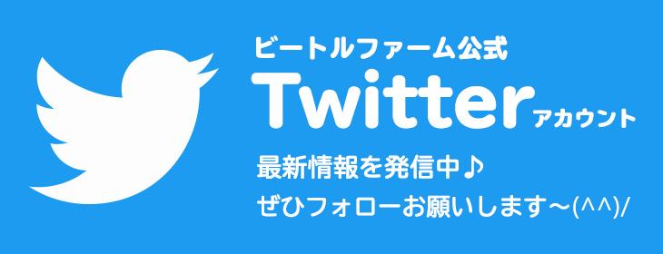 ビートルファームのTwitter(ツイッター)公式アカウントのご案内