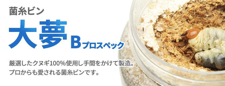 菌糸ビン 大夢Bプロスペック 販売 ビートルファーム