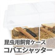 クワガタムシ・カブトムシ用飼育ケース コバエシャッター 販売 通販 専門店 購入