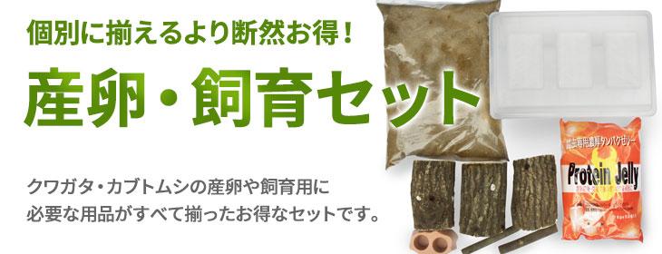 オオクワガタ・クワガタ・カブトムシの産卵・飼育セットの販売・通販・ネット通販・ショップ・専門店・販売店・購入
