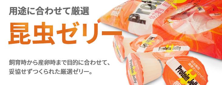 クワガタムシ・カブトムシ用の昆虫ゼリーの販売・通販・ネット通販・ショップ・専門店・販売店・購入